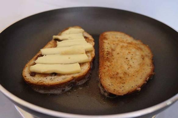 toastedcheese3